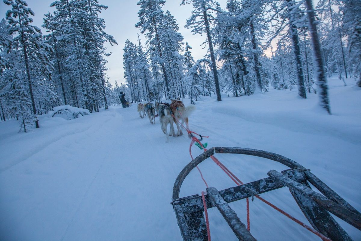 Artisan Travel Husky Safari Credit Antti Pietikainen 2