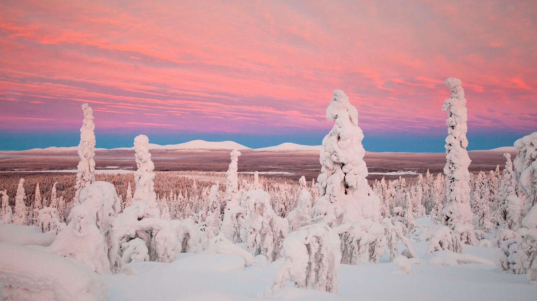 Used Credit Antti Pietikainen 54