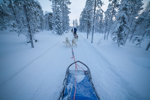 blog finland