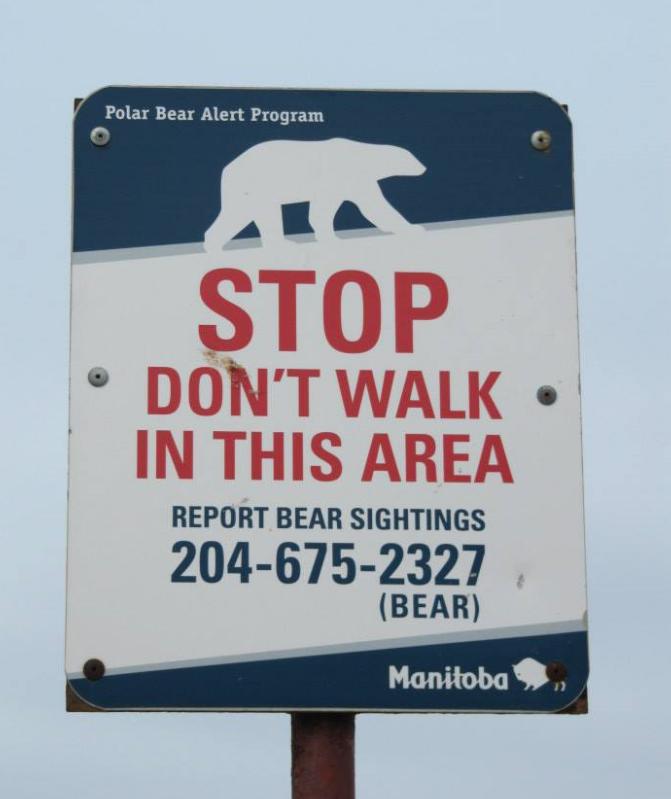 stop polar bears