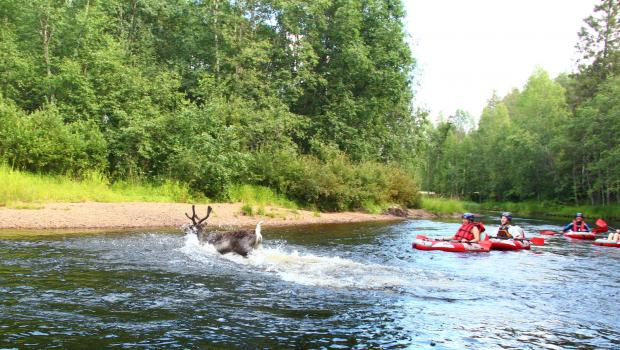 Iso-Syote - Summer in the Finnish Fells
