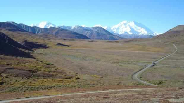 Alaskan Wilderness Trail by Road & Rail