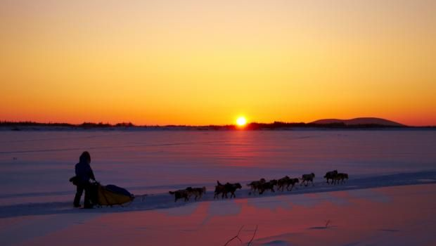 The Spirit of Alaska: Iditarod